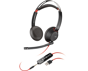 cat4_buyg-headsets_HGVBD.png